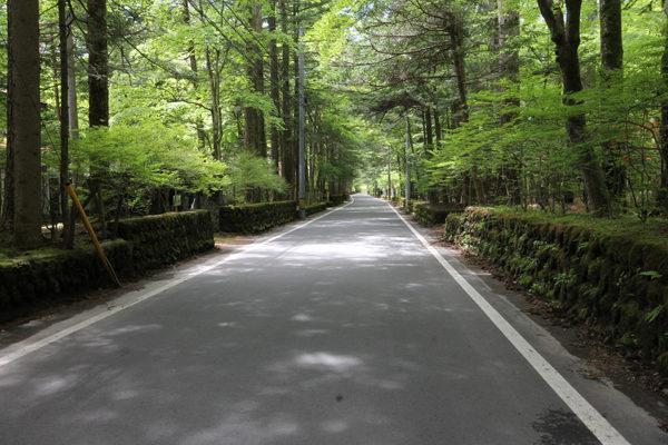 軽井沢・旧ゴルフ通り