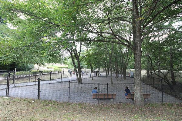 湯川ふるさと公園・ドッグラン