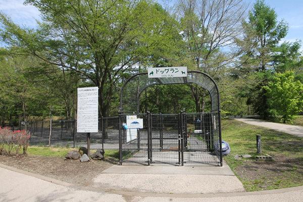 湯川ふるさと公園・ドッグラン入口