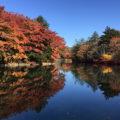 雲場池の紅葉